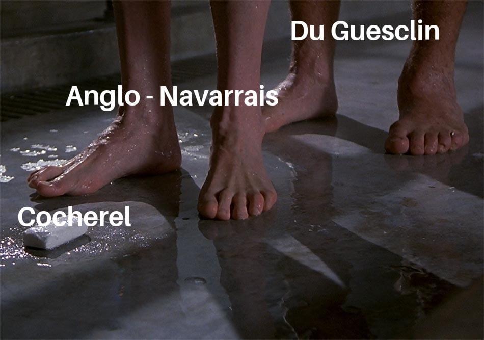 meme bataille coherel